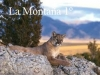 Reserva natural: La Montaña 1º